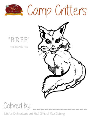 camp-critters-color-bree