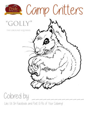 camp-critters-color-golly-squirrel