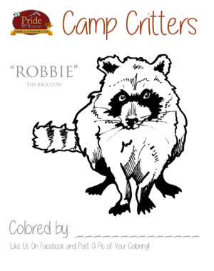 camp-critters-color-robbie-raccoon