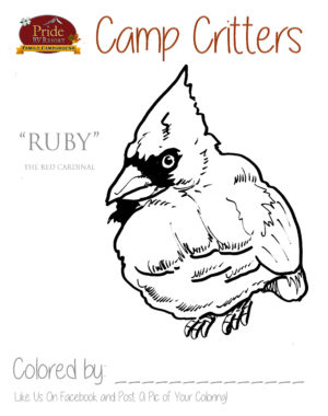 camp-critters-color-ruby