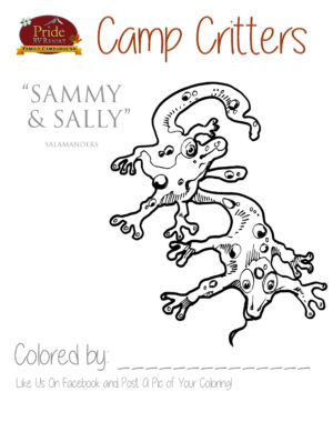 camp-critters-color-salamanders